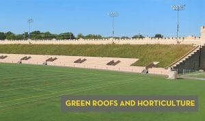 Green Roofs Horticulture